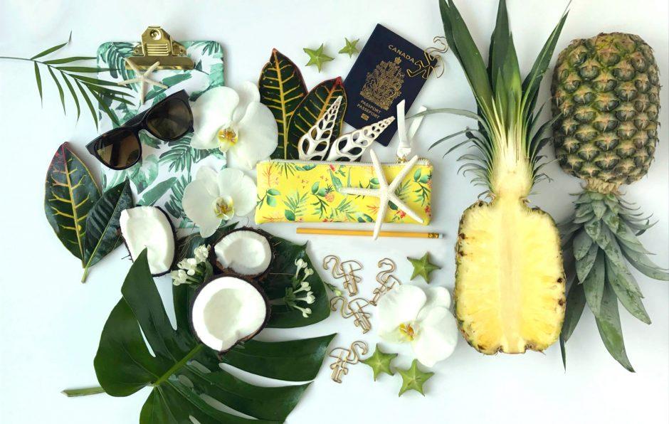 Hawaii flatlay ananas-coconut et accessoires