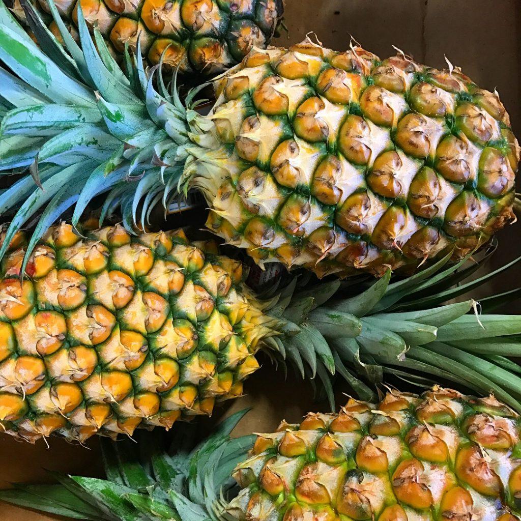 HAWAII comme un local OAHU -DOLE PLANTATION- Plantation des Ananas Dole