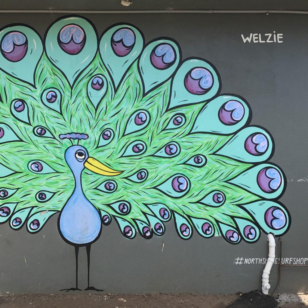murale de paon welzie