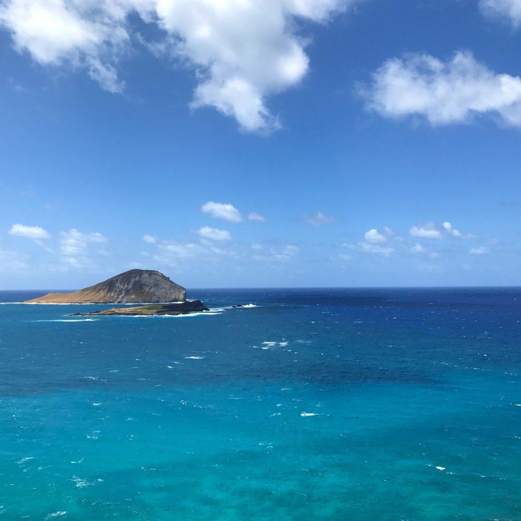 blues Hawaii